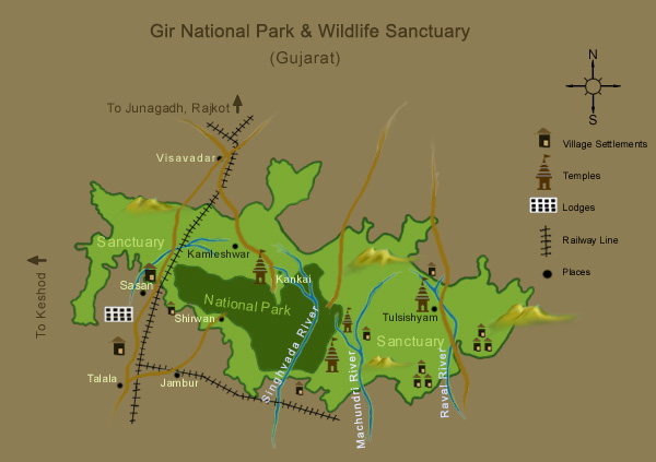 Gir National Park  Wildlife Sanctuary